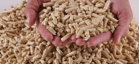 Biomasse - riscaldamento, acqua calda